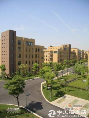 松江新桥园区独栋户型989平4层整体出租9毛每平