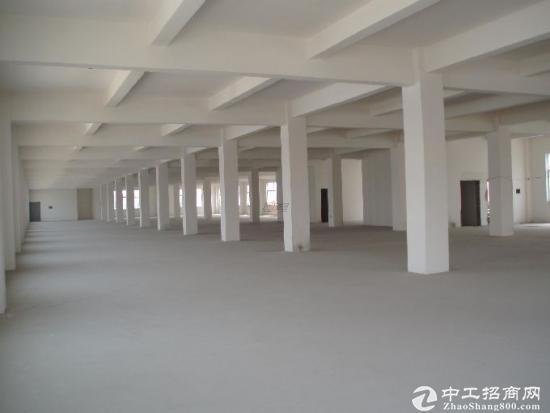 老余杭义桥10亩7800方2388万出售