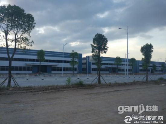 鹤山共和镇钢结构厂房出售