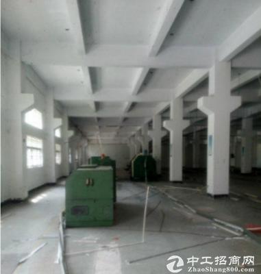 桥头东部快线旁新出一楼900平空地大6米高带装修厂房招租