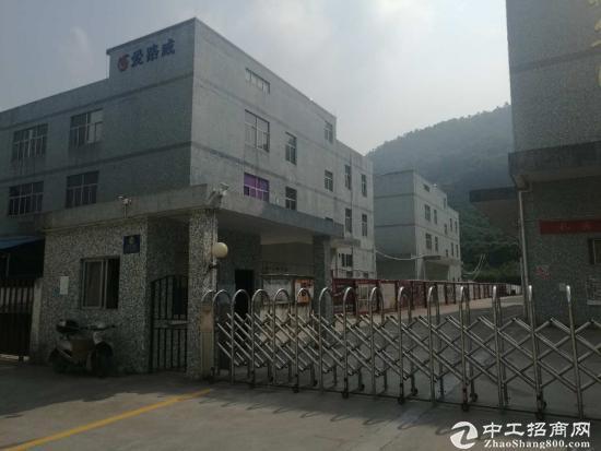 福永怀德村委厂房2栋共18600平面直租-图2
