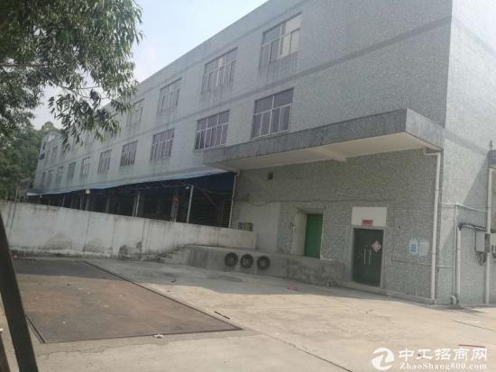 福永怀德村委厂房2栋共18600平面直租-图8