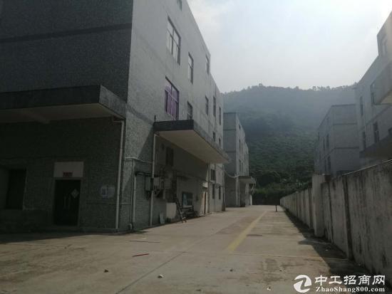 福永怀德村委厂房2栋共18600平面直租