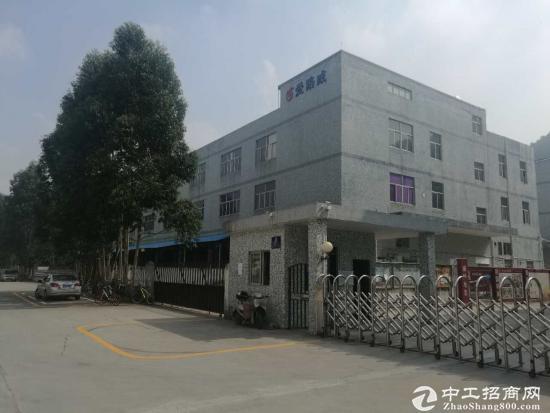 福永怀德村委厂房2栋共18600平面直租-图5