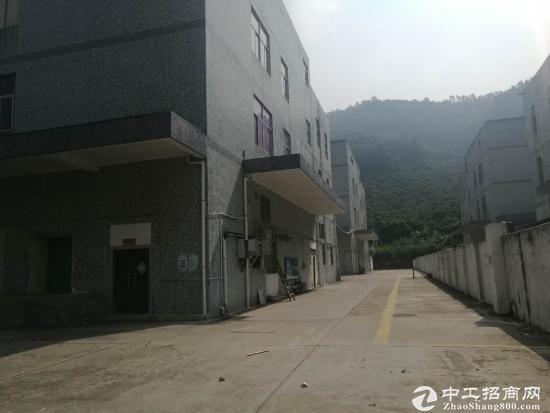 福永怀德村委厂房2栋共18600平面直租-图4
