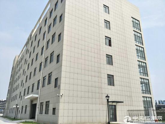 松江可做食品厂房,大房东整栋出租,104可环评