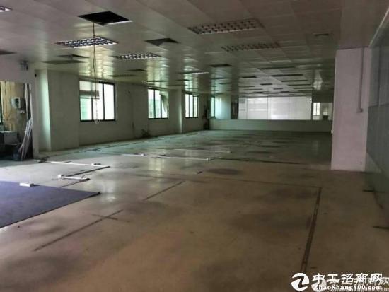 乌沙新安大桥附近新出楼上2000平豪华装修租13-图2