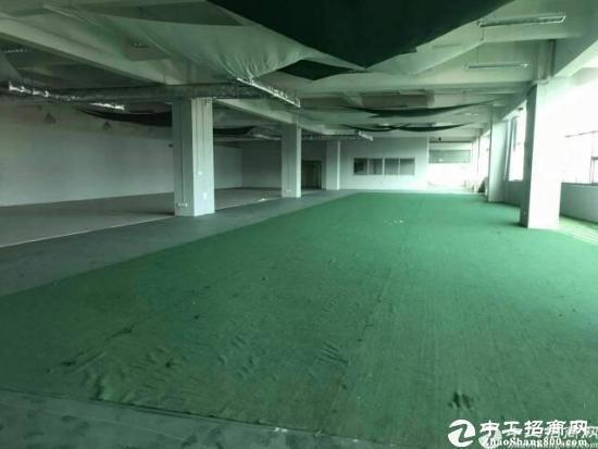 乌沙新安大桥附近新出楼上2000平豪华装修租13-图4