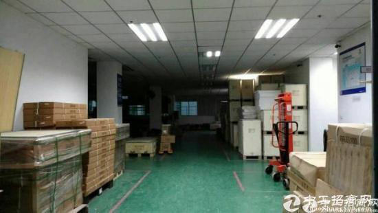 龙岗南通道旁独院工业区豪华装修800平方出租,15块每平米-图5