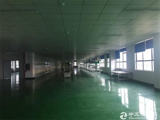 龙岗宝龙高科大道旁1600平精装修厂房招租-图3
