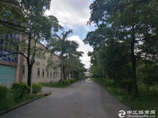 东莞塘厦靠深圳5万平米国有证厂房因业主急需钱现低价出售