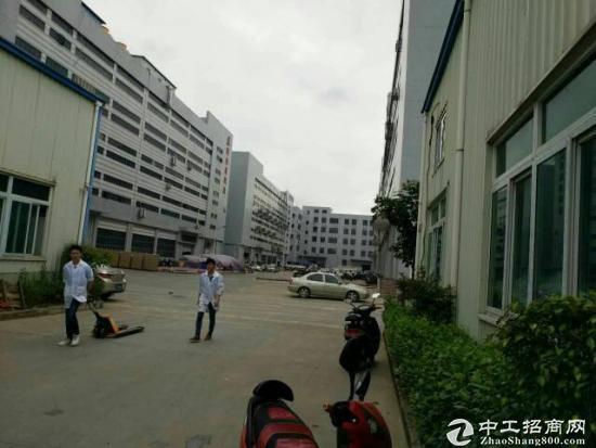 坪山 碧岭新出二楼精装厂房380平招租