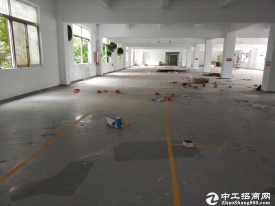 龙岗同乐独院带装修楼上1000平招工 采光好带地坪漆