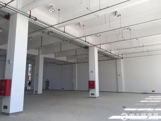永清产业园厂房5083平米出租,单层1684平米