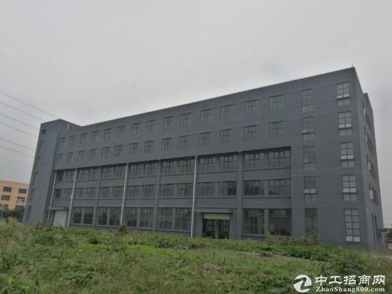 华新镇104块地 独门独院19000平厂房出租 有绿证、可分割