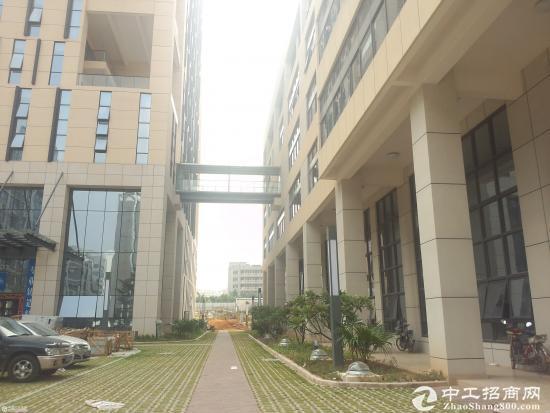 苏家屯单层813.44平米,总2440.32平米厂房出租