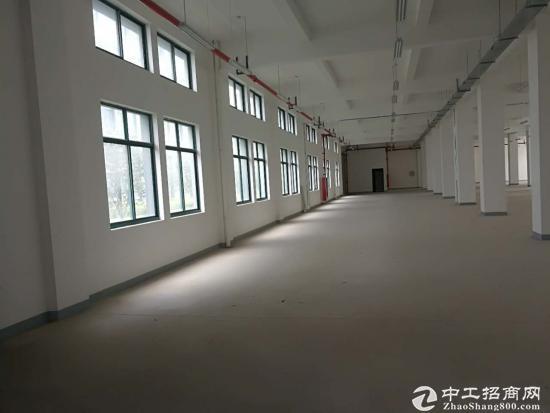 新建厂房仓库办公出租,可分租