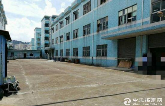 黄江社贝有一楼1300平厂房招租 交通好形象好