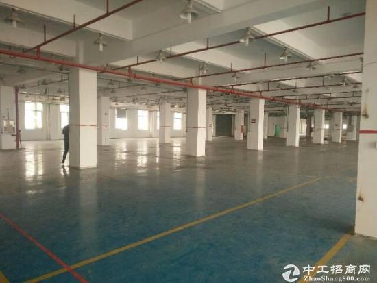 福永和平3楼整层1800平方原房东厂房招租-图2