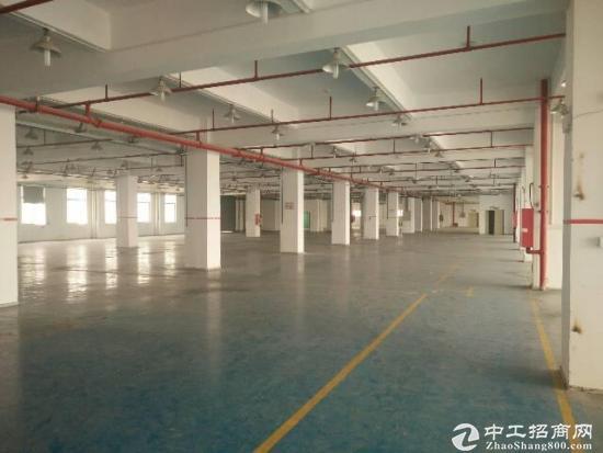 福永和平3楼整层1800平方原房东厂房招租-图3