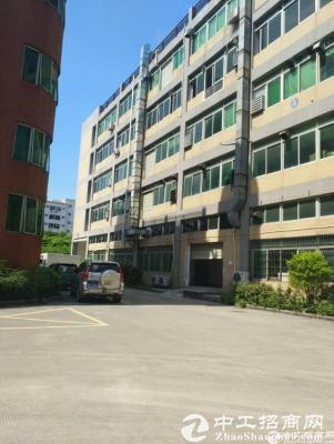 福永和平3楼整层1800平方原房东厂房招租-图4