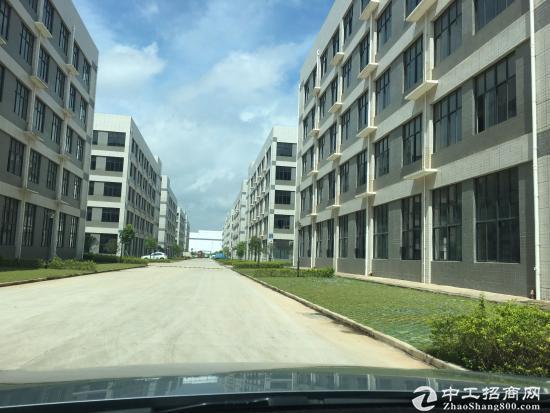 南宁市五象新区厂房现房低价出售-图3