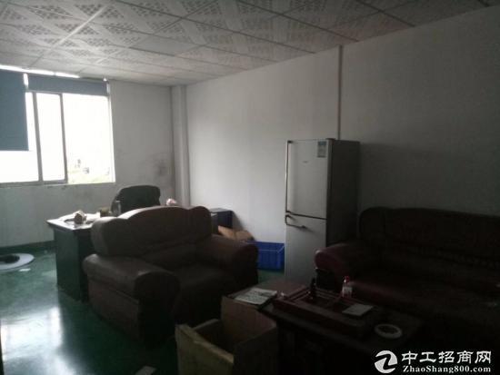 公明马田新出原房东三楼带电梯装修981平厂房出租-图3