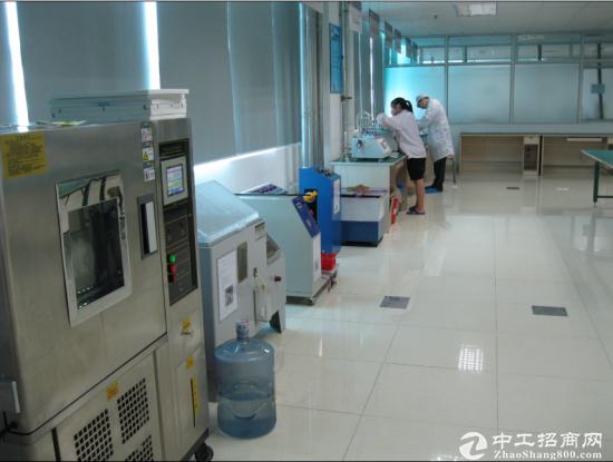 西丽镇阳光社区军威物业4700平精装厂房装修-图2
