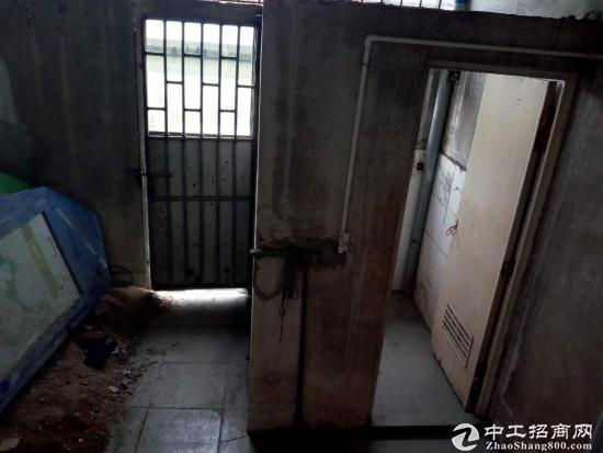港口市场附近一楼仓库 商铺120方出租1400元-图4