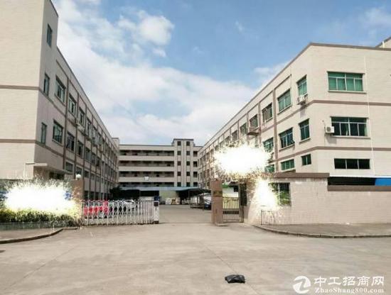 东江大道附近独院标准厂房8000平方两栋出租