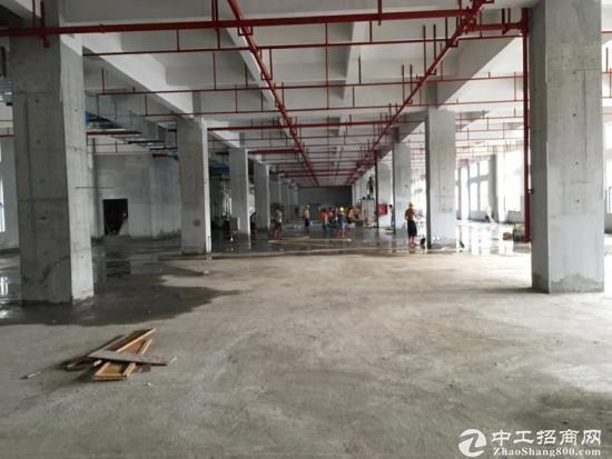 深圳107国道800米全新厂房出售-图3
