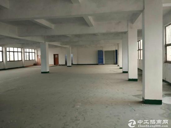 虎门镇新出独院厂房3000平方现招租,宿舍1200方,水电已到位