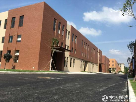 双福新区 标准园区 全新现房  框架厂房-图2
