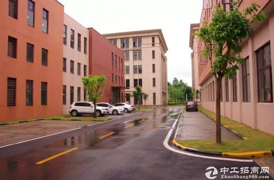 西永 标准园区 独栋框架厂房 1000平米-图2