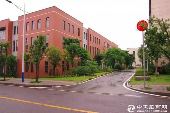 西永 标准园区 独栋框架厂房 1000平米-图3