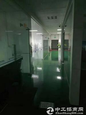 龙岗坑梓主干道边独院厂房5500平出租-图4
