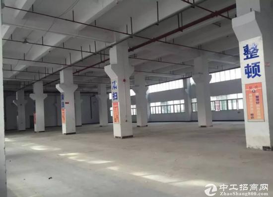 出租)龙华民治新出独院6800平厂房300平方起租-图2