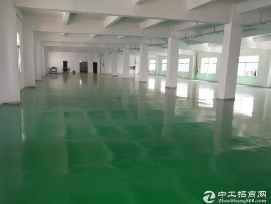 嶂背 新出楼上900平厂房 全新地坪漆-图3