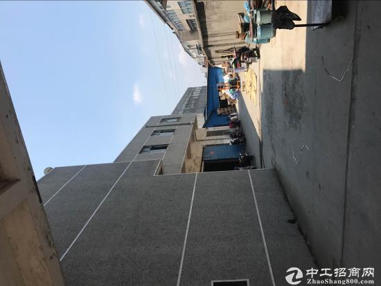 武进礼嘉坂上大厂房出租,交通便利,设施齐全-图3