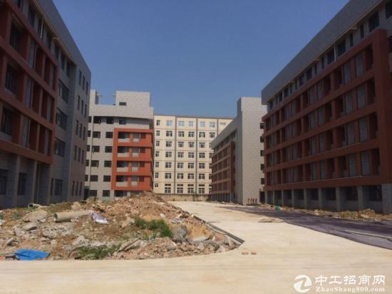 武汉市东西湖区方圆国际产业园4200㎡ 全新工业厂房租/售-图2
