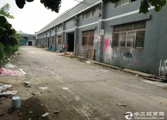 石湾1500平方单一层独院厂房招租