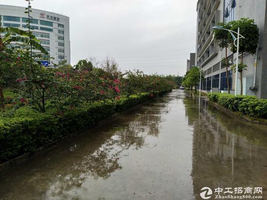 龙岗 宝龙工业区 带红本厂房1000平方出租-图3