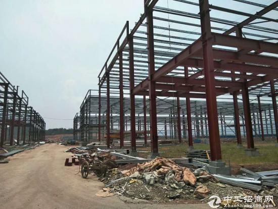 大学城厂房出售 单层钢结构+双层框架结构