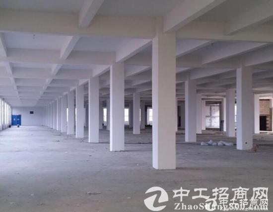 南浔园区标准厂房6200平米出售