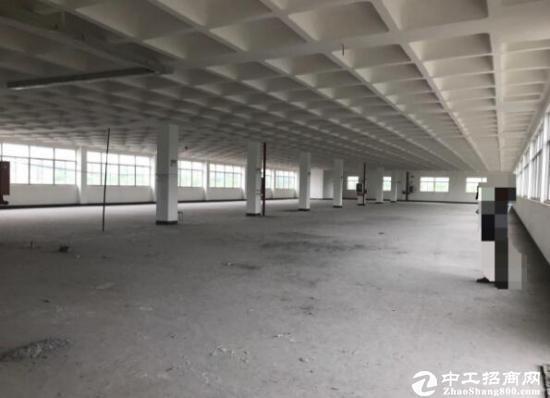 南浔双林工业园区全新标准厂房4500平方出售