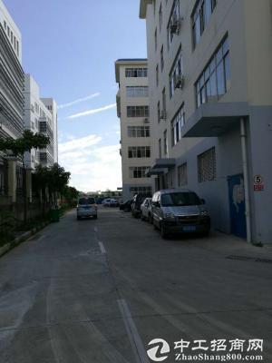 江南经济开发区标准工业厂房300-893平租售-图4
