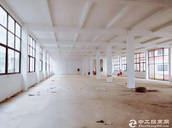 万江大工业区新出3800平标准厂房出租 滴水6米