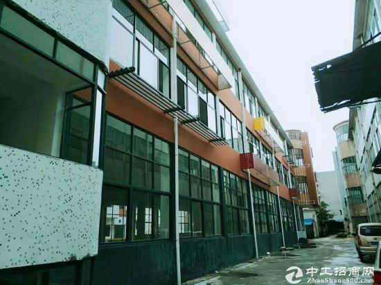 万江大工业区新出3800平标准厂房出租 滴水6米-图2