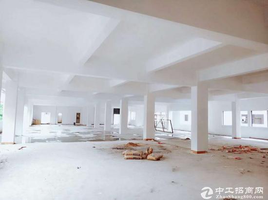 万江大工业区新出3800平标准厂房出租 滴水6米-图3