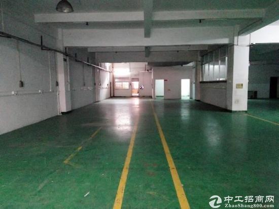 锦厦2楼560方精装修厂房-图3